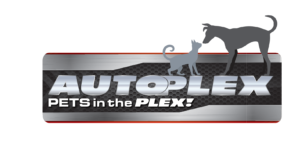 Pets in the 'Plex - Borman Autoplex of Las Cruces